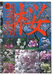 新 日本の桜
