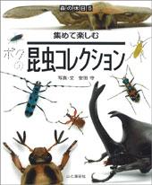 集めて楽しむ 昆虫コレクション