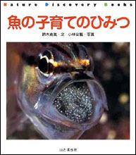 魚の子育てのひみつ