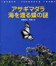 アサギマダラ 海を渡る蝶の謎