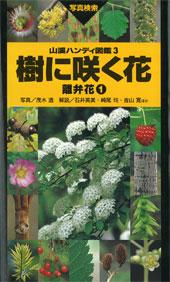 樹に咲く花 離弁花1