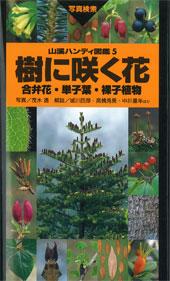 樹に咲く花 合弁花・単子葉・裸子植物
