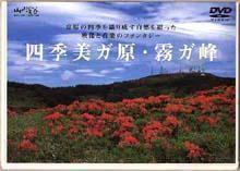 四季美ガ原・霧ガ峰