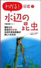 わかる!図鑑8 水辺の昆虫