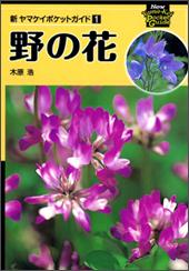 新ヤマケイポケットガイド 野の花