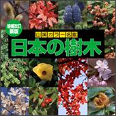 増補改訂新版 日本の樹木