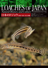 日本のドジョウ 形態・生態・文化と図鑑 日本分布の全33種・亜種を網羅した初めての図鑑
