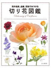 花の名前、品種、花色でみつける 切り花図鑑