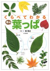 くらべてわかる木の葉っぱ 550種類の葉っぱのちがいが一目瞭然!