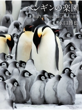 ペンギンの楽園 地球上でもっとも生命に溢れた世界