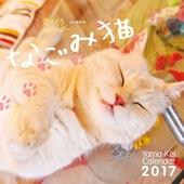 カレンダー2017 週めくりカレンダー なごみ猫