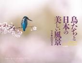 カレンダー2018 鳥たちと日本の美しい風景 Birds and Beautiful Japan