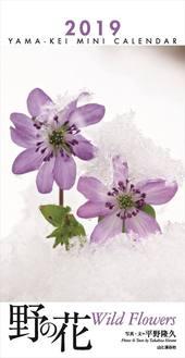 カレンダー2019 ミニカレンダー 野の花