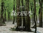 カレンダー2019 森の四季