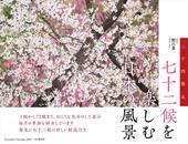 カレンダー2019 七十二候を楽しむ日本の風景