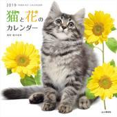 カレンダー2019 猫と花のカレンダー