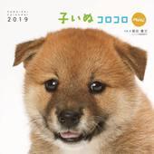 カレンダー2019 子いぬコロコロ mini