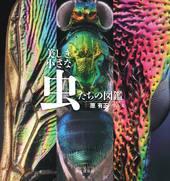 美しき小さな虫たちの図鑑