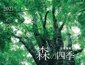カレンダー2021 森の四季