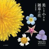 カレンダー2021 美しき小さな雑草の花