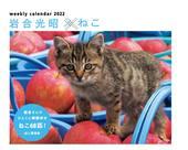 カレンダー2022 岩合光昭×ねこ