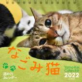 カレンダー2022 週めくりカレンダー なごみ猫