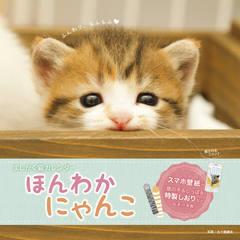 ましかく猫カレンダー ほんわかにゃんこ