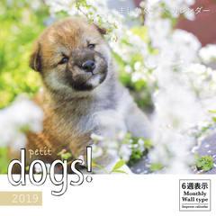 ましかく子犬カレンダー petit dogs!