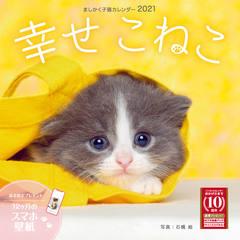 ましかく子猫カレンダー 幸せこねこ