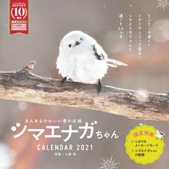 まんまるかわいい雪の妖精 シマエナガちゃん CALENDAR 2021