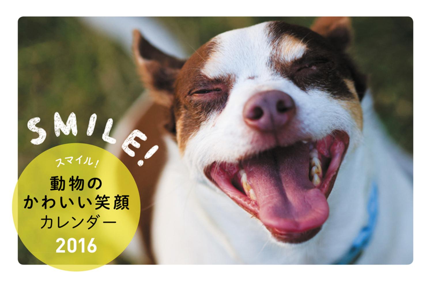 2016 スマイル!動物のかわいい笑顔カレンダー