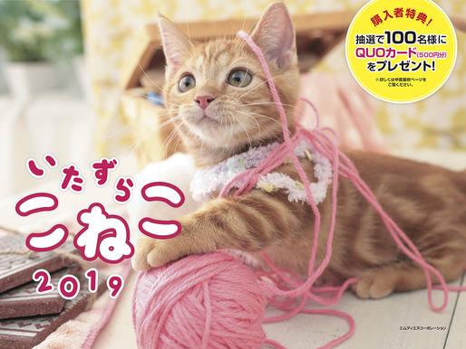 2019 いたずらこねこカレンダー