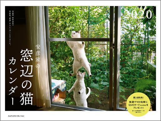 2020 安彦家の窓辺の猫 カレンダー